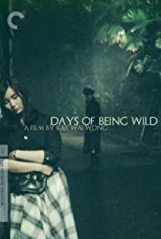 Days Of Being Wild วันที่หัวใจรักกล้าตัดขอบฟ้า